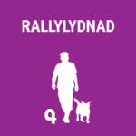 Bildlänk till Rallylydnad